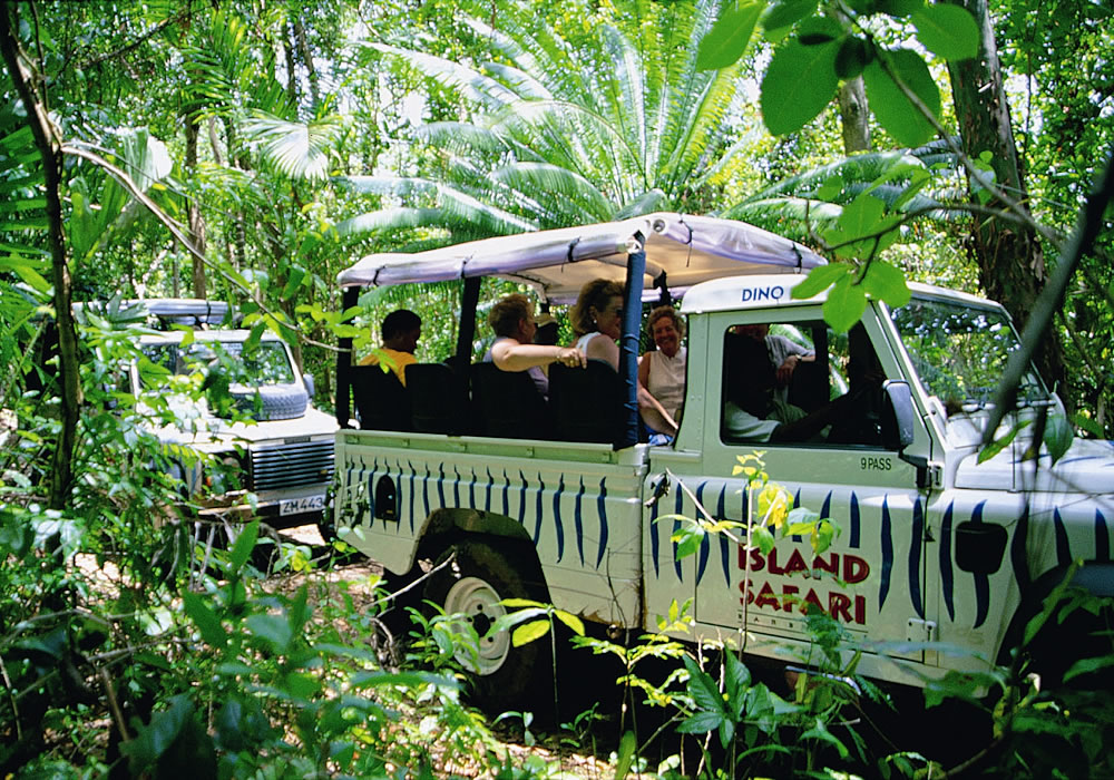 Island Safari Adventure